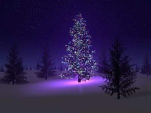 Hillis_Pugh_christmas_love