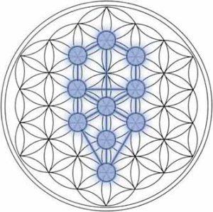Purification_Meditation_tree_of_Life